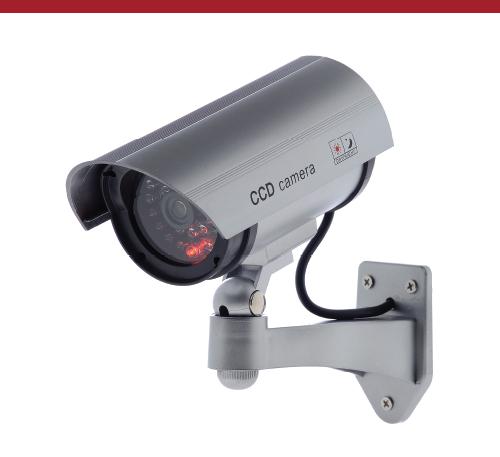 Simulated Surveillance Camera