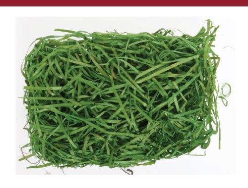 Excelsior Basket Filler Grass