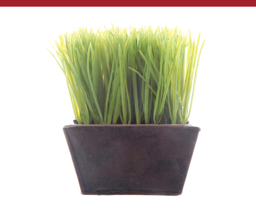 Small Artificial Grass Planter